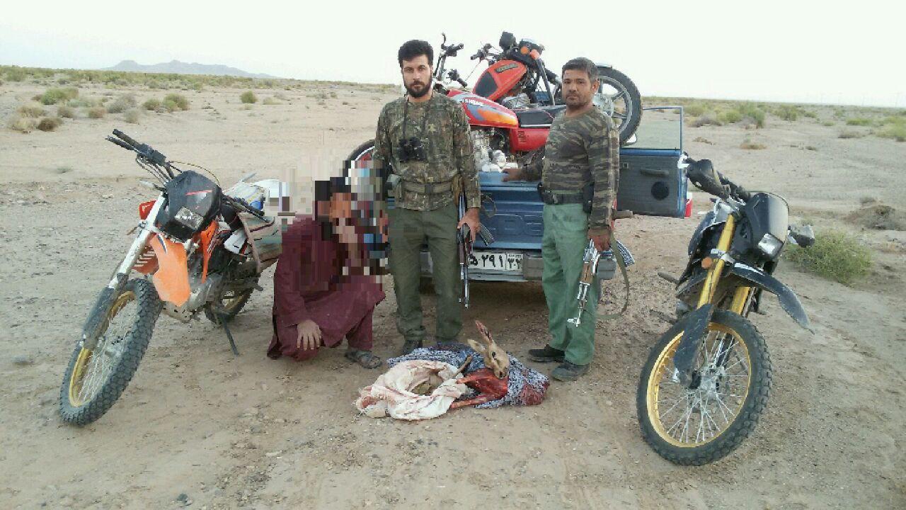 دستگیری شکارچیان حرفهای و سابقهدار در خواف