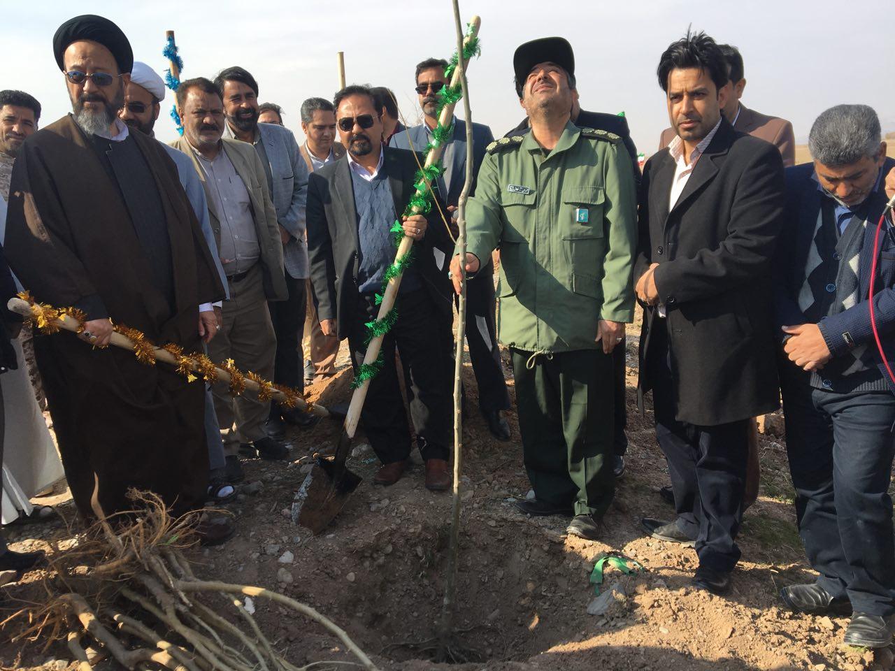 کاشت ۱۱۲ نهال به یاد ۱۱۲ شهید شهرستان خواف آغاز شد