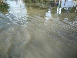 بارش های بی سابقه در شهرستان خواف