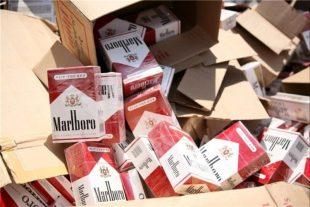 ۷۹ هزار نخ سیگار قاچاق در خواف کشف شد